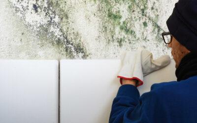 Eliminare la muffa su muri, pareti, soffitto e tutte le condense da cui derivano